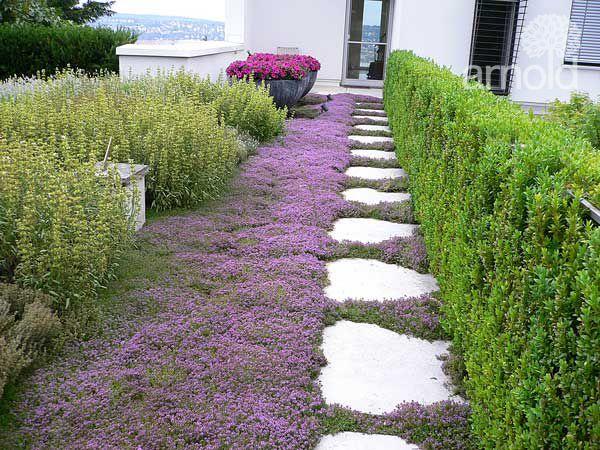 Gartengestalung Ausführung 01