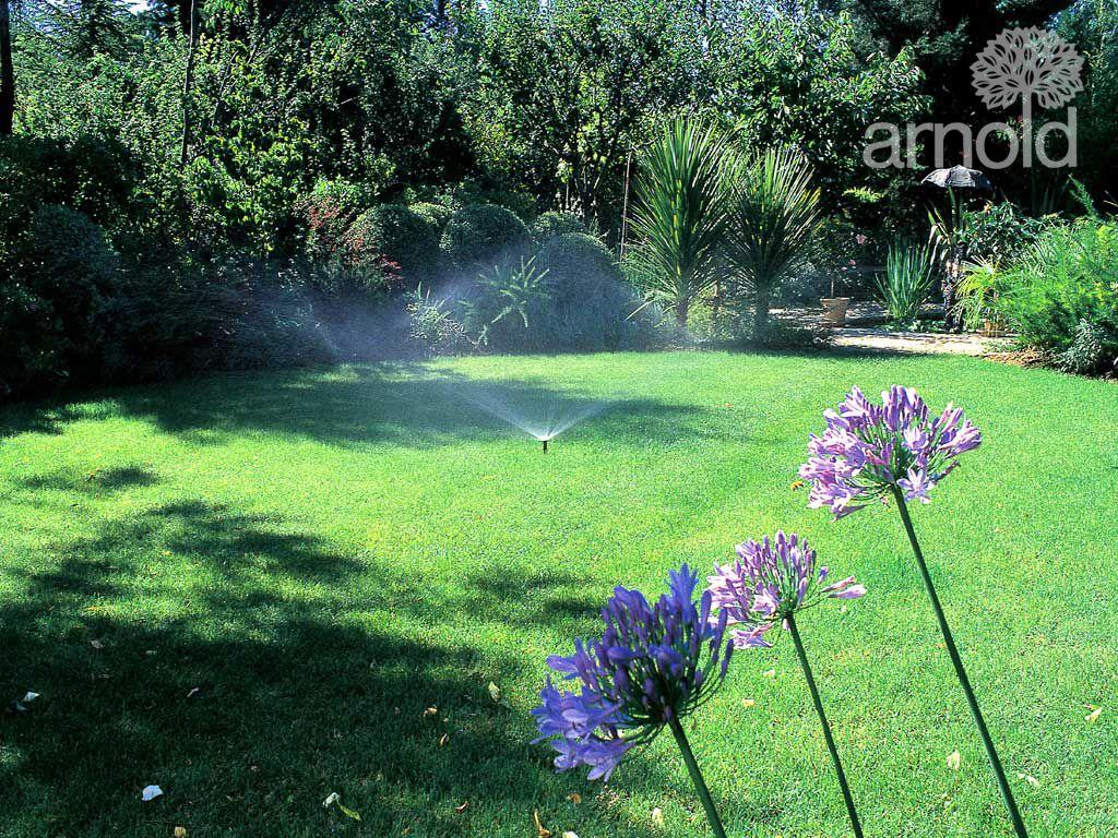 Service für Bewässerung 1