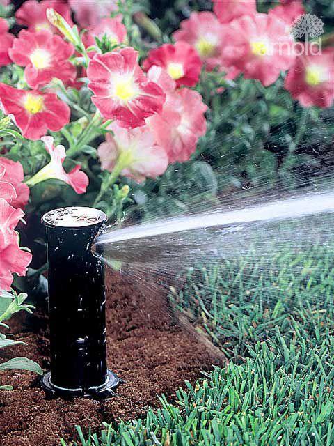 Service für Bewässerung 3