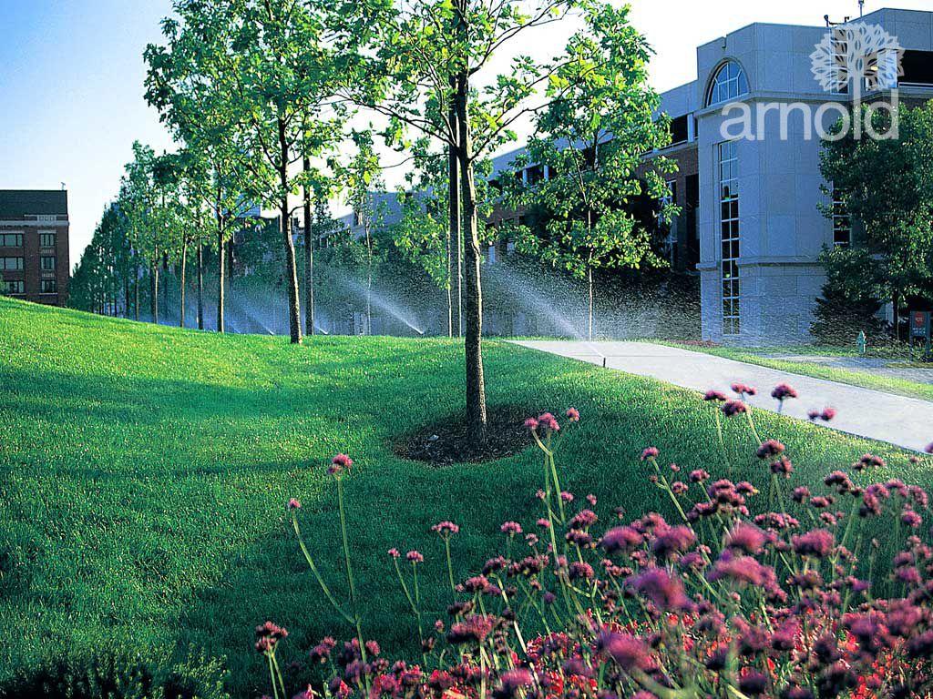 Service für Bewässerung 6