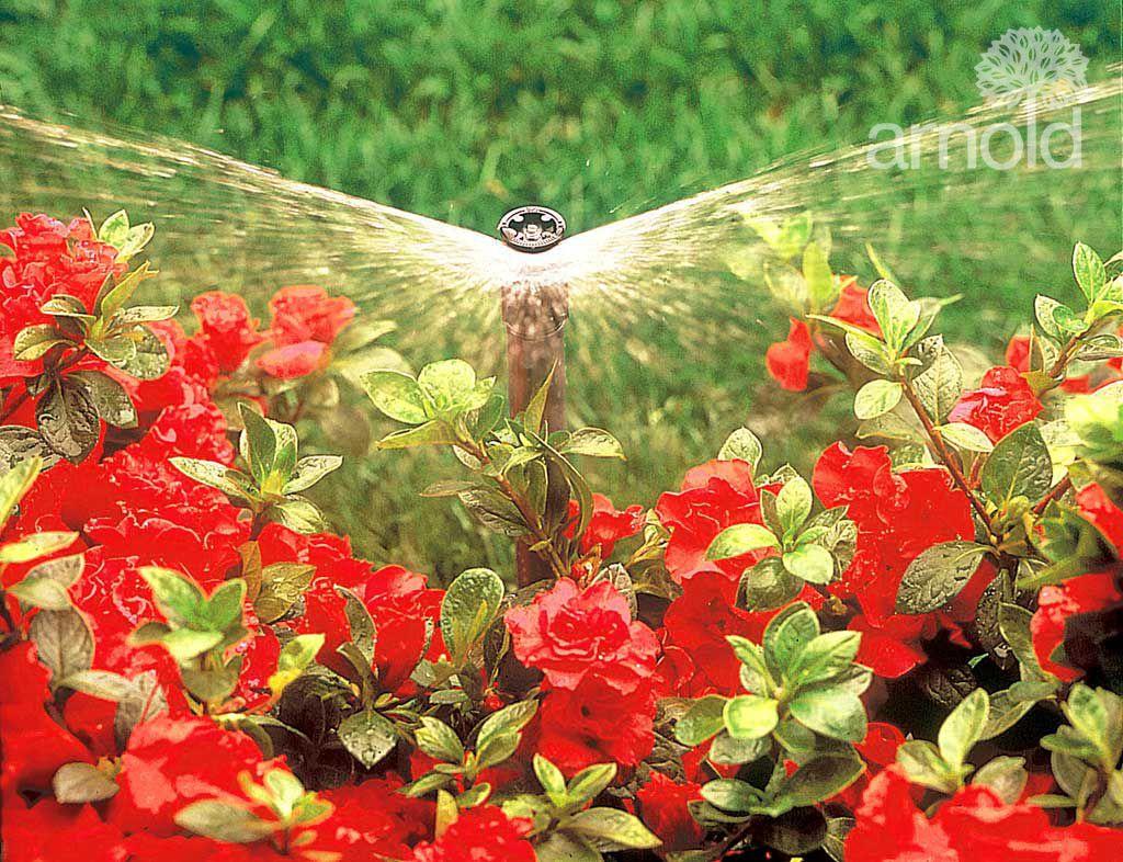 Service für Bewässerung 8
