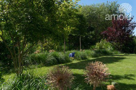 Garten mit zwei blauen Schafen