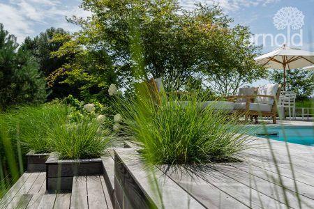 Ländliches Gartenidyll mit Gräserlandschaft