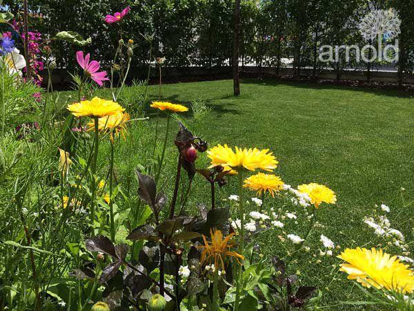 Gartengestaltung Pflege gewerblich 04