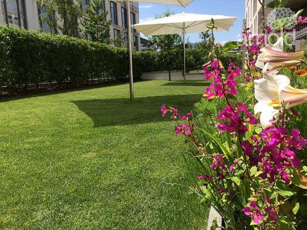 Gartengestaltung Pflege gewerblich 06