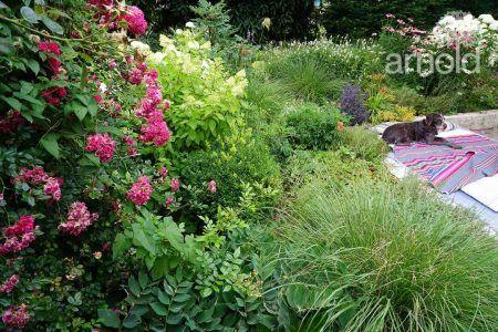 Kein Bett im Kornfeld…aber im Garten!